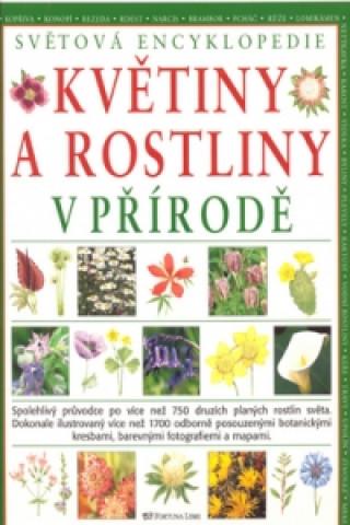 Květiny a rostliny v přírodě