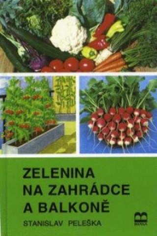 Zelenina na zahrádce a balkóně