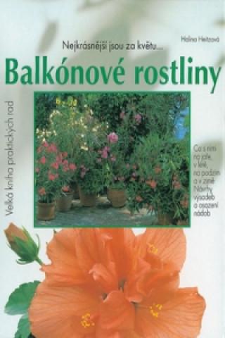 Balkónové rostliny  Nejkrásnější jsou za květu...