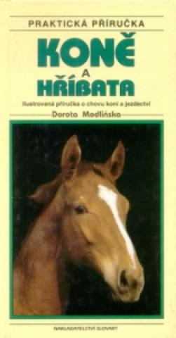 Koně a hříbata