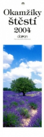 Okamžiky štěstí 2004 - nástěnný kalendář