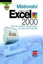 Mistrovství v Microsoft Excel 2000
