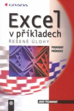 Excel v příkladech