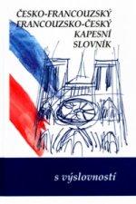 Česko-francouzský, francouzko-český kapesní slovník s výslovností