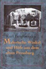 Malerische Winkel und Höfe aus dem Alten Pressburg