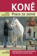 Lesley Bayleyová - Koně
