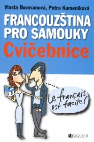 Francouzština pro samouky Cvičebnice
