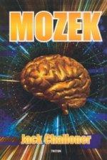 The Brain Mozek