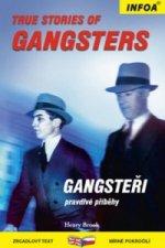 True Stories of Gangsters/ Gangsteři