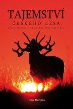 Tajemství českého lesa