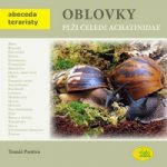 Oblovky čeledi Achatinidae