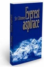 Everest aspirace