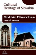 Gothic Churches