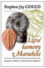 Lživé kameny z Marakéše