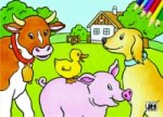 Domácí zvířata - omalovánka
