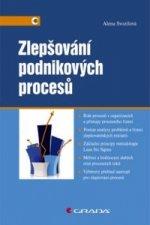 Zlepšování podnikových procesů