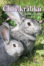 Chov králíků