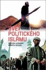 Svět politického islámu