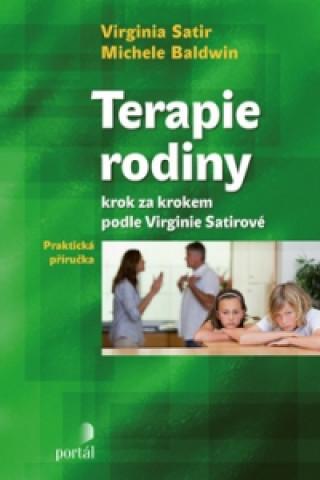 Terapie rodiny