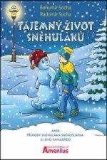 Tajemný život sněhuláků