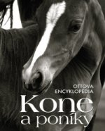 Kone a poníky