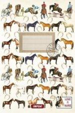 Notýsek Lidé a koně