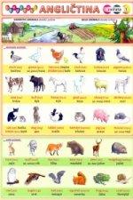 Obrázková angličtina 1 zvířata