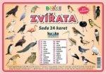 Sada 24 karet Ptáci