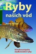 Ryby našich vôd
