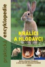 Králíci a hlodavci praktická encyklopedie