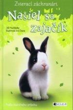 Našiel sa zajačik