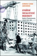 Utváření socialistické modernity