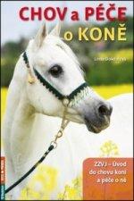Chov a péče o koně