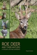 Roe Deer and their Antlers