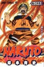 Naruto 26 Odloučení