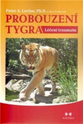 Probouzení tygra Léčení traumatu