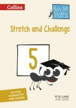 Stretch and Challenge 5