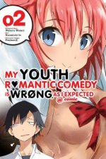 My Youth Romantic Comedy Is Wrong, As I Expected @ comic, Vol. 2 (manga)
