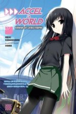 Accel World, Vol. 7 (light novel)