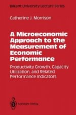 Microeconomic Approach to the Measurement of Economic Performance