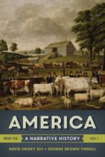 America - A Narrative History