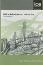 BIM in Principle and in Practice