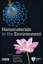 Nanomaterials in the Environment