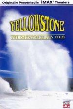 DVD YELLOWSTONE