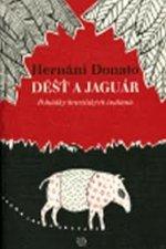 Déšť a jaguár