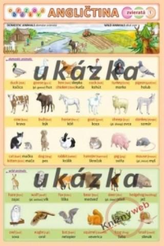 Obrázková angličtina 1 - zvieratá
