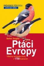 Ptáci Evropy - Určovací atlas