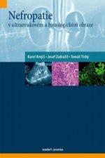 Nefropatie v ultrazvukovém a histologickém obraze
