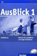 Brückenkurs, Arbeitsbuch m. Audio-CD