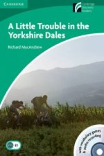 Little Trouble in the Yorkshire Dales Level 3 Lower-intermediate Book with CD-ROM and Audio CDs (2)